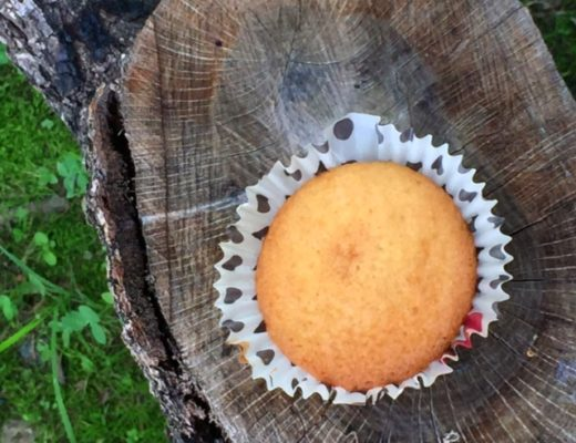 muffin perfetti senza glutine