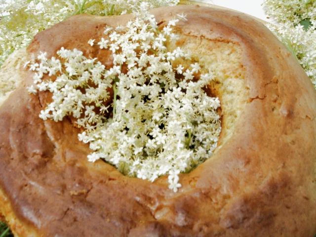 Panse senza glutine ai fiori di sambuco